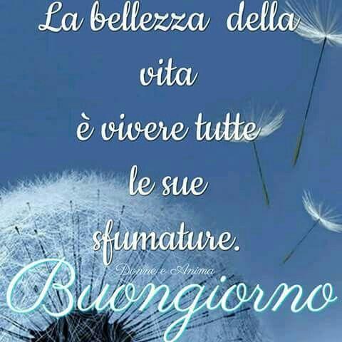 Molto 229 best buonagiornatae images on Pinterest | Good morning, Luigi  OG13