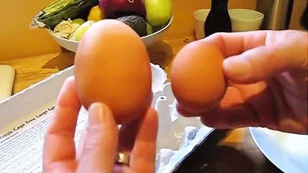 Talált egy hatalmas tojást, amikor feltörte nagyon megdöbbent – VIDEÓ