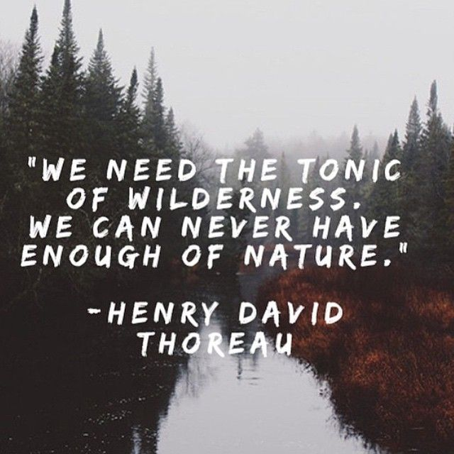 YES. 🌳🍃🌳 // #truth #wellsaid #thoreau #nature #regram From