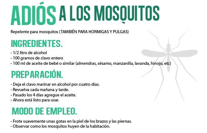 México prevé el ingreso del virus del chikunguña, el cual causa una enfermedad similar al dengue.  La enfermedad puede presentarse entre tres y siete días después de la picadura de un mosquito infectado