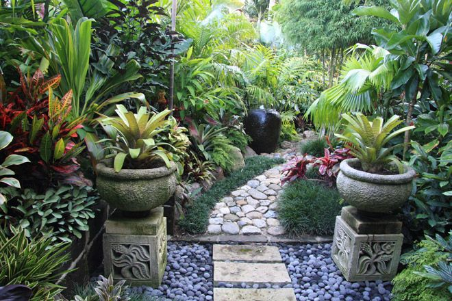 Noting like an enchanting walk through a tropical oasis. Tropical garden by Dennis Hundscheidt. Stunning garden on a 1/4 acre block.