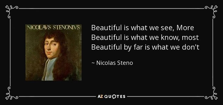 Beautiful is what we see, More Beautiful is what we know, most Beautiful by far is what we don't - Nicolas Steno
