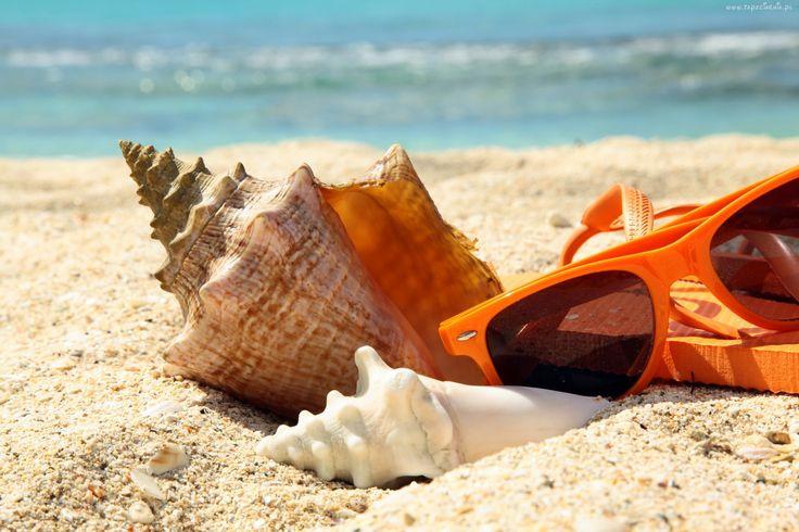 Lato, Morze, Plaża, Muszle, Okulary