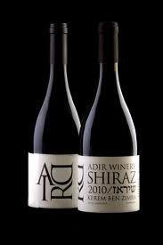 אדיר יין - Google Search