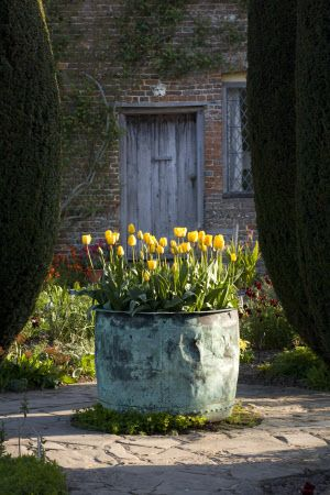 Yellow tulips in the copper ornamental planter in the Cottage Garden at Sissinghurst Castle Garden, near Cranbrook, Kent