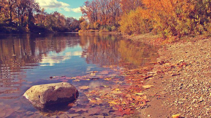 A Rock In The Thames River - London, Ontario, Canada -  thetemenosjournal.com