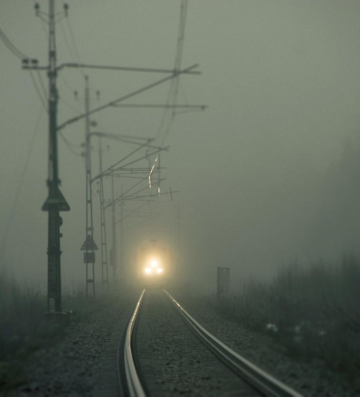 Photograph Untitled by ali vaezi on 500px