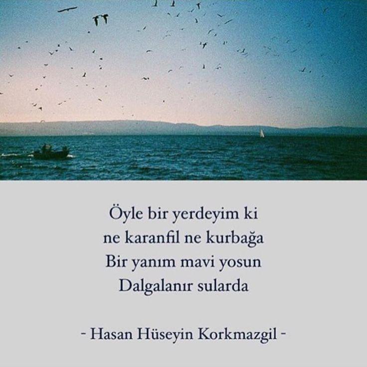 Öyle bir yerdeyim ki ne karanfil ne kurbağa. Bir yanım mavi yosun dalgalanır sularda. - Hasan Hüseyin Korkmazgil / Öyle Bir Yerdeyim ki (Kaynak: Instagram - kitapklubu) #sözler #anlamlısözler #güzelsözler #manalısözler #özlüsözler #alıntı #alıntılar #alıntıdır #alıntısözler #şiir #edebiyat