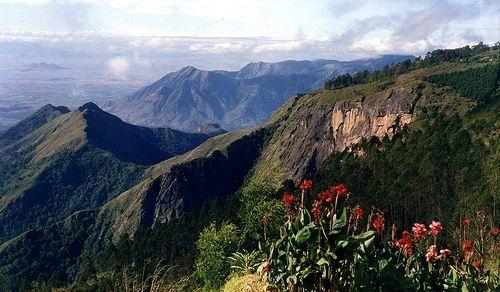 Kodaikanal - Tamil Nadu, India. #incredibleindia #tamilnadu #kodaikanal #mountains #Mountain #India #landscapes #indian #exoticindia #indiatravel #mountainphotography