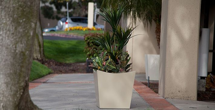 Fiberglass Planters: How This Material Can Save You Money