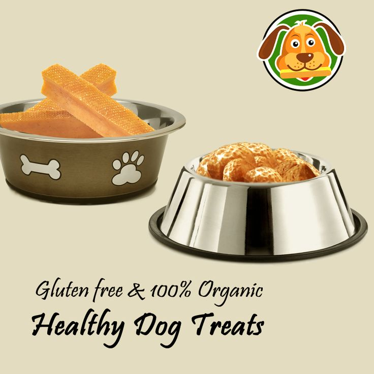 Are you choosy about your pet's diet? Buy #organic #gluten free products for your dog and give a healthy lifestyle.