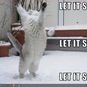 funny snow storm wallpaper - photo #43