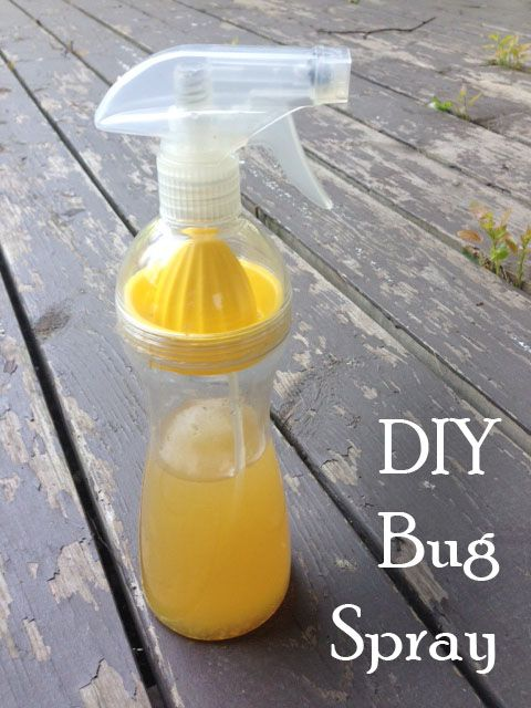 DIY Bug Spray - Chemical and Toxin free!