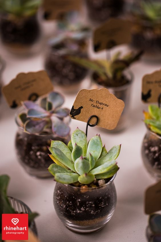 escort cards/favors all in one.