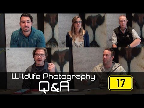Wildlife Photography Q&A: Episode 17 - We talk rhino connservation