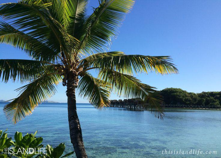 THIS ISLAND LIFE | Likuliku Lagoon Resort, Fiji
