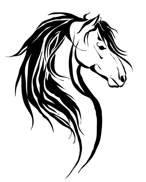 Line Drawing Horse Tattoo : Best ideas about tribal horse tattoo on pinterest