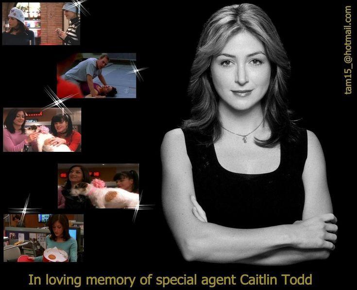 Caitlin Todd NCIS   NCIS Caitlin 'Kate' Todd
