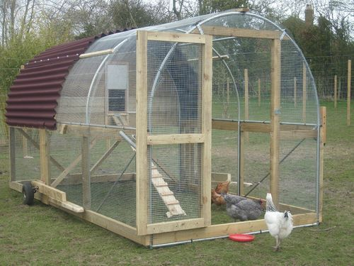 697 best images about chickens chicken tractors coops for Big chicken tractor