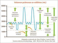 ESQUEMAS TEMARIO DE AUXILIARES DE ENFERMERÍA PARA OPOSICIONES: VOLUMENES RESPIRATORIOS