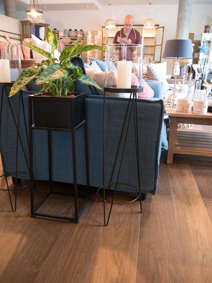 Einzelhandel Geschäft für Lifestyle und Interior Dekoration in Berlin: Sofa mit Pflanze