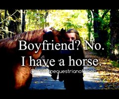 If your a horseback rider, you'll understand. :)