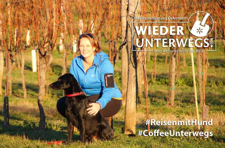 [7Ways2Travel] Vom Weinviertel in den Seewinkel: Der tiefste Ort Österreichs - Wiederunterwegs.com