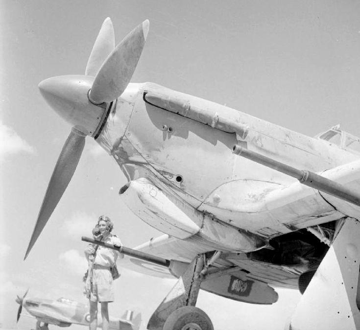 Hawker Hurricane with 40 mm (1.57 in) Vickers S gun -  A Mark IID Hurricane of 6 Squadron at Shandur, Egypt (1942) http://weaponsandwarfare.com/?p=4055
