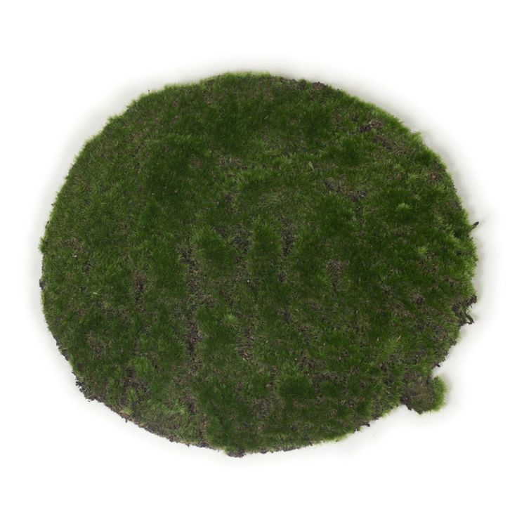 These cute 30cm round artificial green moss pads are a great addition to your Easter table.