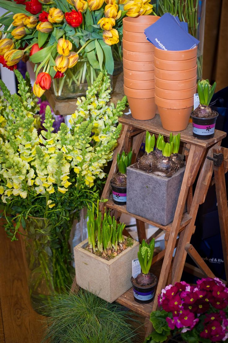 Flower stall by Hayford Rhodes at Victorian townhouse Kent House Knightsbridge showcase event