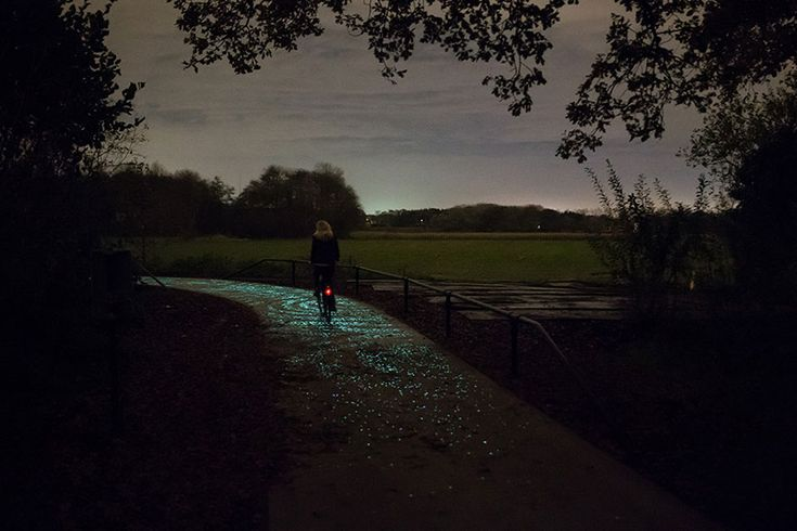 Glow in the dark bicycle pathway in the Netherlands, design inspired by Van Gogh. Magic!