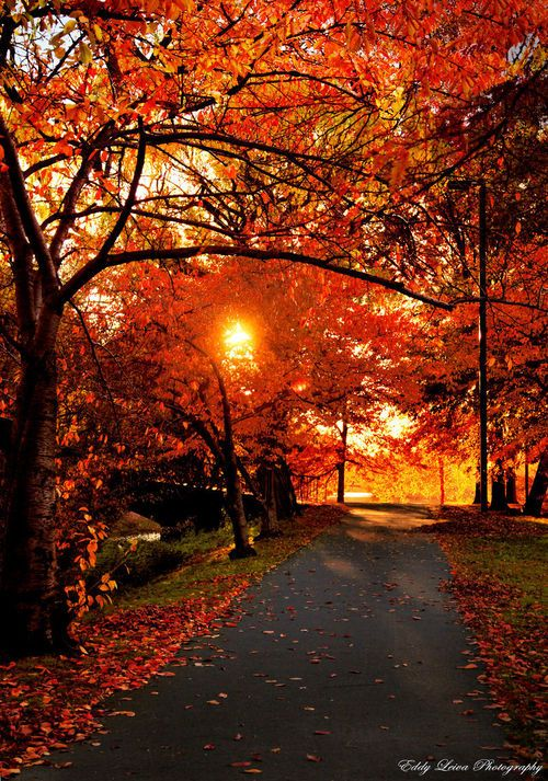 The light is different in the fall.....