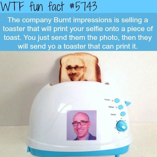 Burnt Impressions - WTF fun facts - http://thisissnews.com/burnt-impressions-wtf-fun-facts/