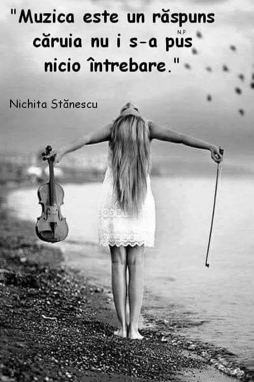 Citate Despre Arta Fotografie : Muzica citate citate citate frumoase citate motivaționale