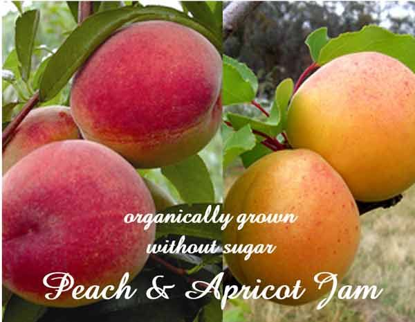 Ingredients: fresh Peach pulp & Apricot pulp from organically grown Peaches & Apricot, salt, lemon; no added sugar  no synthetic colours or flavours, no chemicals.