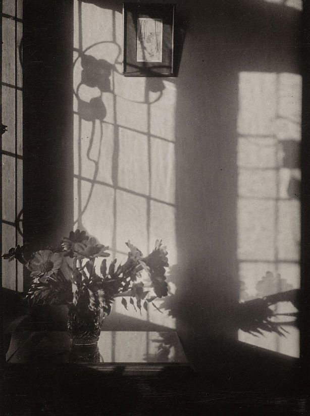 Minor White American 1908-1976 Windowsill daydreaming Rochester, New York, July 1958 From the portfolio Sound of one hand 1960-1965. Art Gallery of New South Wales, Sydney Reproduction with permission of the Minor White Archive © Princeton University Museum of Art  .