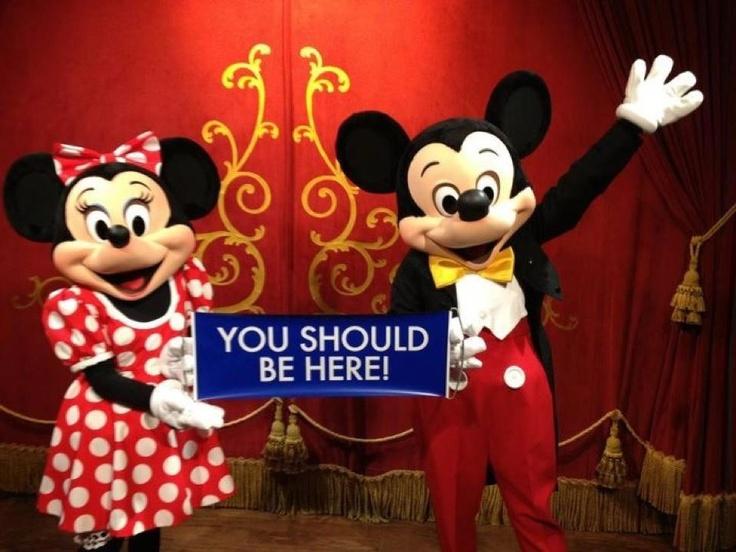 Disney Trip  World Ventures