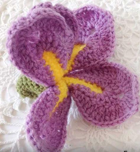 Iris flower crochet diagram diy wiring diagrams free video tutorial for a dutch iris orchid crochet flower crochet rh in pinterest com iris ccuart Images