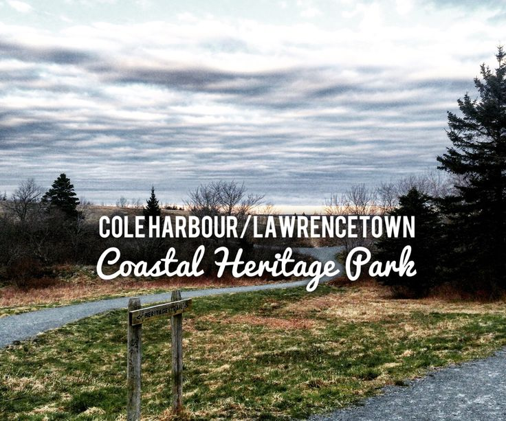 Cole Harbour/Lawrencetown Coastal Heritage Park in Cole Harbour, Nova Scotia is quite possibly my favourite place to spend some quiet (dog-friendly) time with my best friend. halifaxdogventures.com