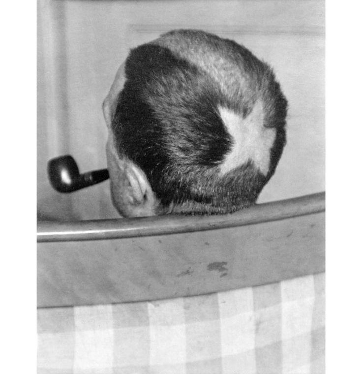 Marcel Duchamp, 1921 - Tonsure en étoile par de Zayas