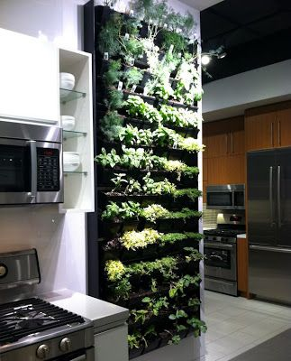 Herb garden in the kitchen--awesome idea, and looks so cool!   Gotta wonder though, how would you water and pick the herbs at the top?