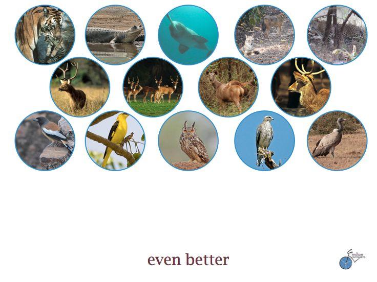 Bandhavgarh National Park in Madhya Pradesh