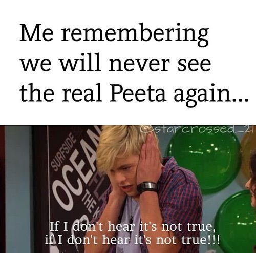 My exact feelings. I might just go cry. In a hole. Until mockingjay part one comes out. Then go cry in a hole because it's real:((