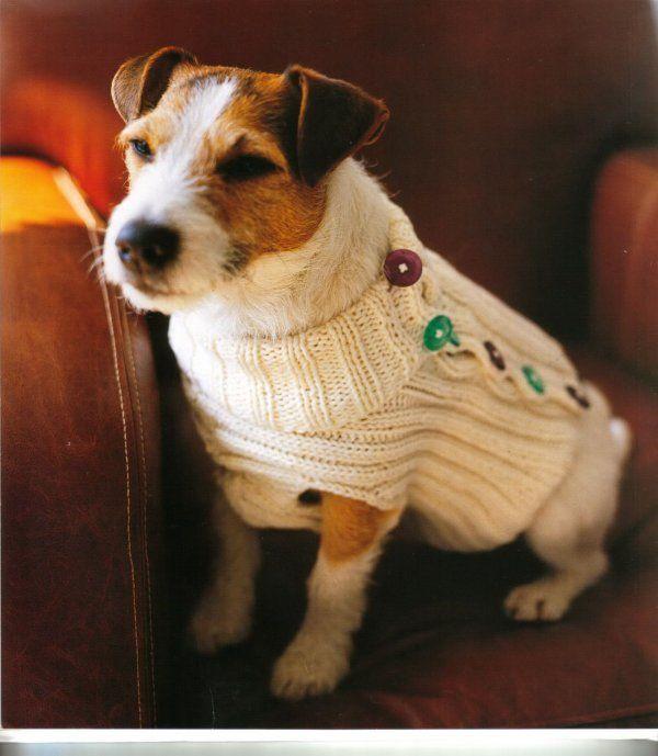 tuto manteau pour chien