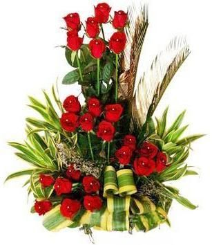 Send red rose to India