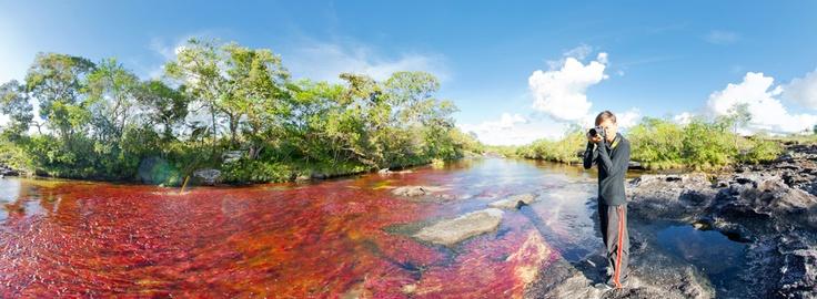 Caño Cristales: El río más hermoso del mundo