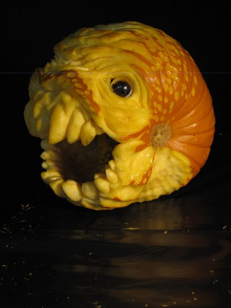 355 Best Halloween Images On Pinterest Halloween