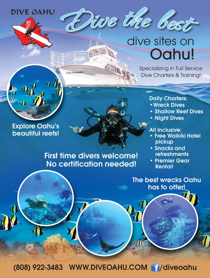 Dive the best dive sites on Oahu! We are specializing in full service dive charters & training! First time divers are welcome! NO CERTIFICATION NEEDED! Call the shops today to book (808) 922-3483  Daily Charters: ✔️ Wreck Dives ✔️ Shallow Reef Dives ✔️ Ni