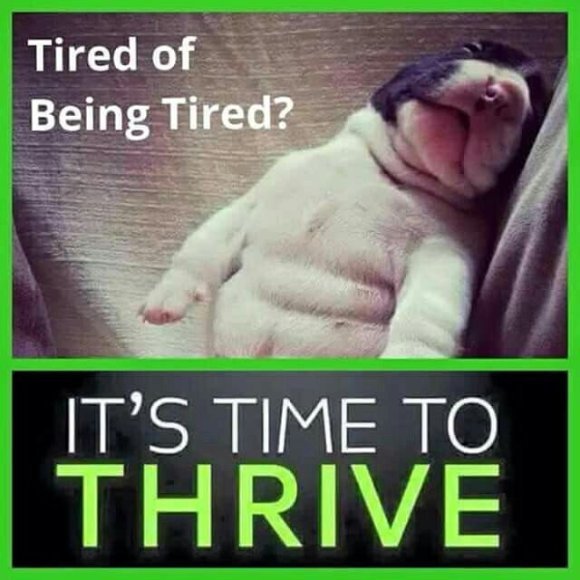 Image result for Level Thrive Happy monday