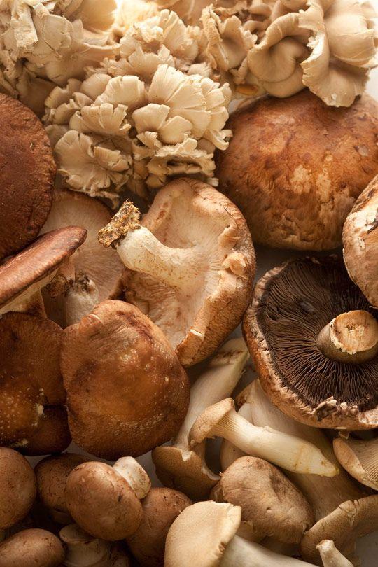 ... 'Shroom on Pinterest | Gnocchi, Baked mushrooms and Truffle fries